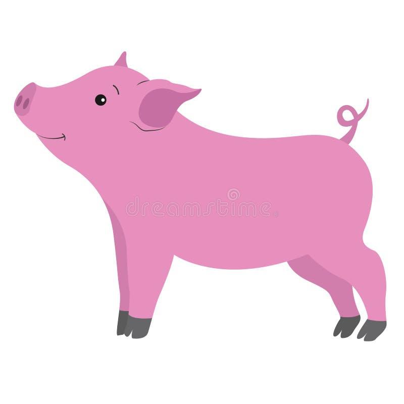 微笑在白色背景的害羞的美丽的猪 库存例证