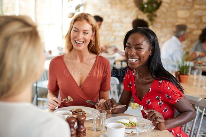微笑对在咖啡馆的早午餐,关闭的年轻女性朋友  免版税库存照片