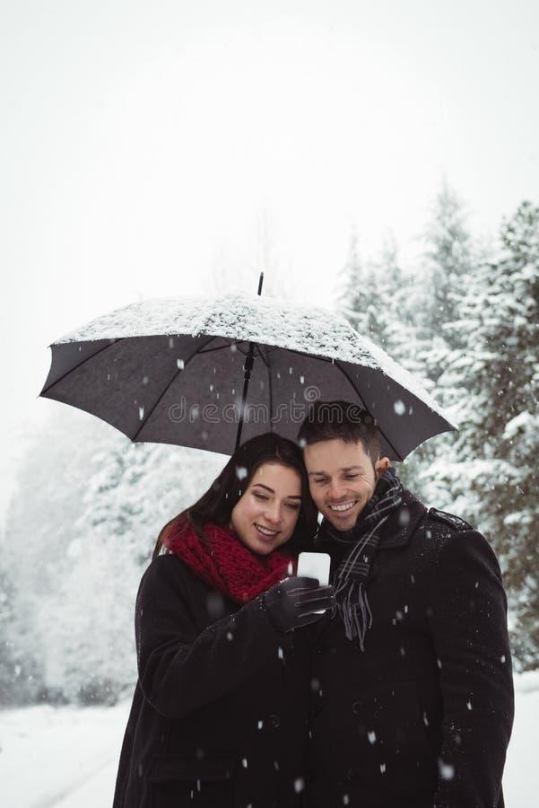 微笑的夫妇在使用手机的伞下在森林里 库存照片