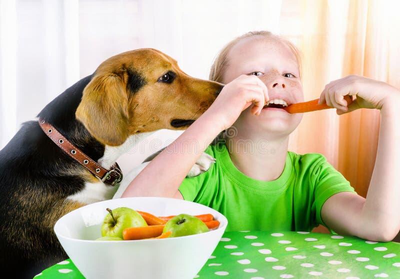 微笑的女孩和逗人喜爱的小猎犬狗 库存照片