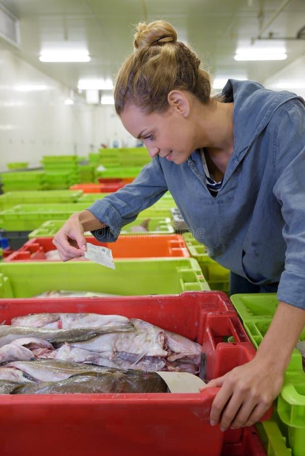微笑的女性工作在鱼工厂 免版税库存照片
