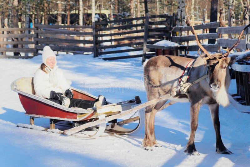 微笑的妇女驯鹿爬犁乘驾在冬天罗瓦涅米,拉普兰,芬兰 免版税库存图片