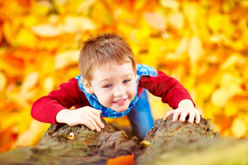 微笑的孩子,爬一棵树的男孩在秋天公园 图库摄影