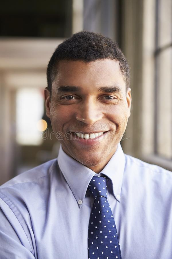 微笑的混合的族种商人,垂直的画象 免版税库存图片