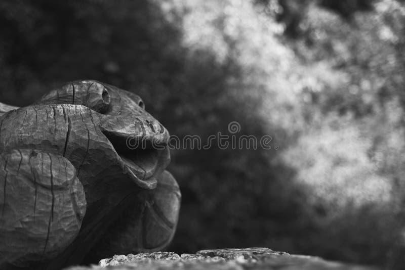微笑的滑稽的木青蛙 库存图片