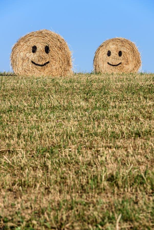 微笑的秸杆大包 库存图片