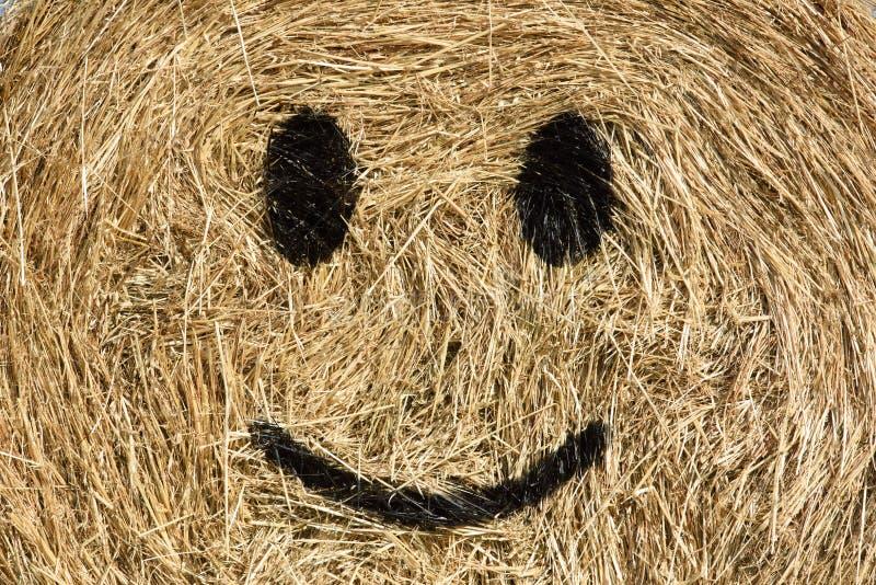 微笑的秸杆大包 免版税图库摄影
