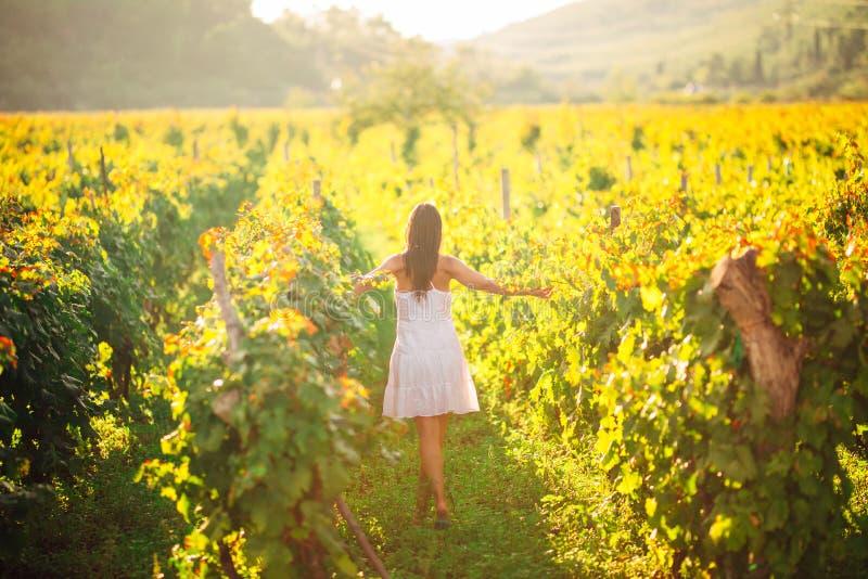 微笑的端庄的妇女本质上 喜悦和幸福 葡萄酒领域的平静的女性在日落 葡萄酒增长领域 农业游览 库存图片