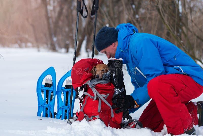 微笑的远足者在他的背包投入滑稽的小狗 免版税库存图片
