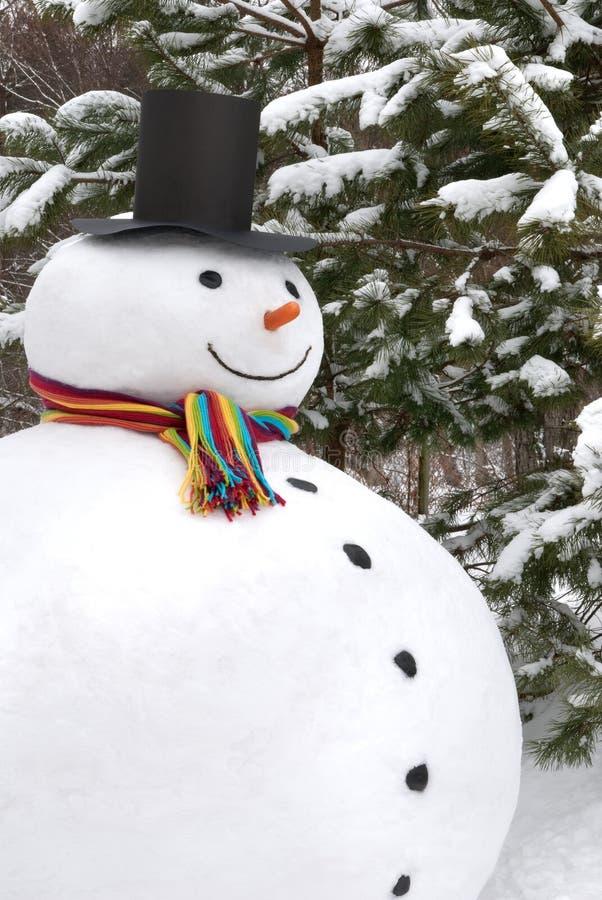 微笑的雪人 库存图片