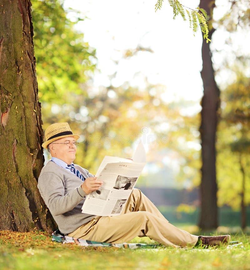 微笑的绅士供以座位读一张报纸在公园秋天 免版税库存照片