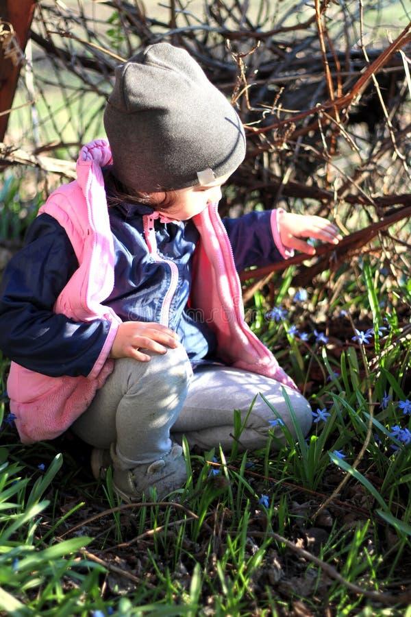 微笑盖帽的温暖地加工好的女孩坐她的在蓝色snowdrops中花的膝盖在葡萄园里 库存图片