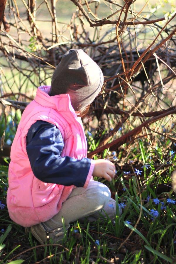 微笑盖帽的温暖地加工好的女孩坐她的在蓝色snowdrops中花的膝盖在葡萄园里 免版税图库摄影