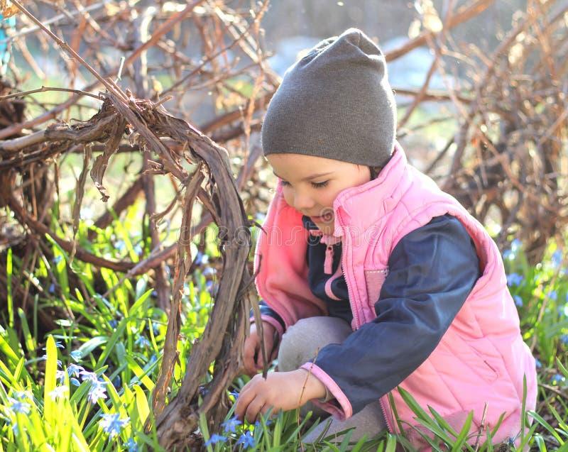 微笑盖帽的温暖地加工好的女孩坐她的在蓝色snowdrops中花的膝盖在葡萄园里 免版税库存图片