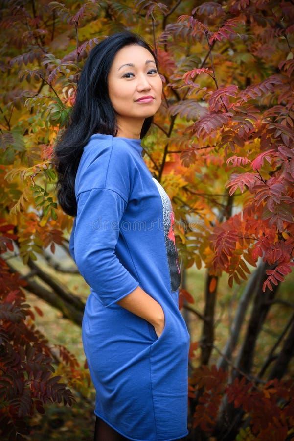 微笑秋天的妇女-愉快的可爱和美丽的混合的族种亚裔白种人少妇秋天画象在森林里  免版税图库摄影