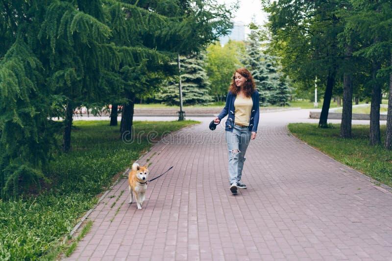 微笑美女走的有教养的小狗在绿色公园享受夏日 免版税库存图片