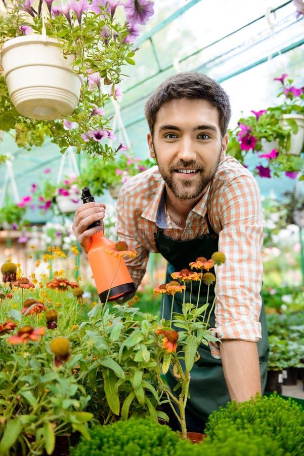微笑年轻英俊的快乐的花匠,浇灌,照料花 图库摄影