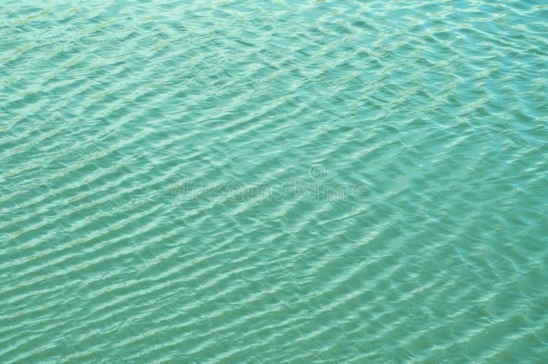微风挥动水和形式波浪 免版税库存图片
