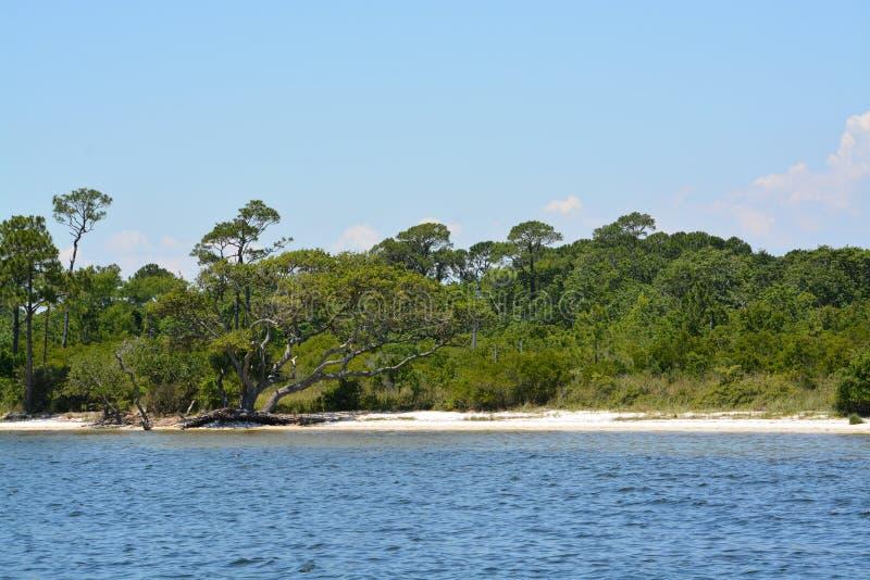 微风湾海岸在墨西哥湾的,美国圣罗萨县佛罗里达 免版税图库摄影