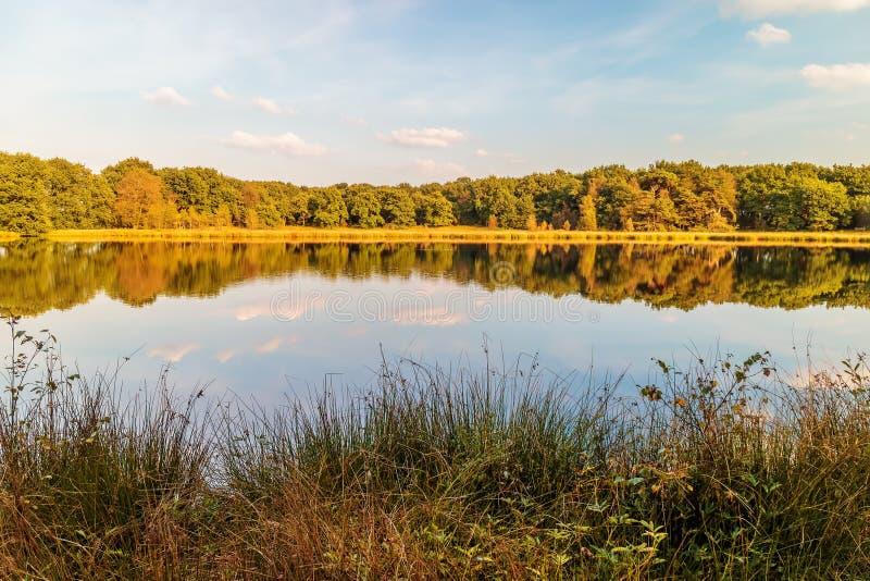 德伦特省,荷兰省的沼泽地  免版税库存图片