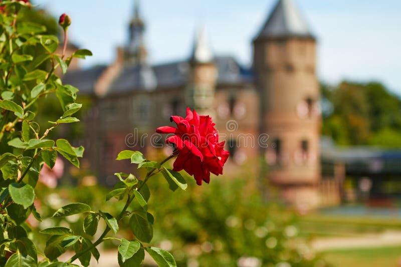德哈尔城堡的庭院 免版税库存照片