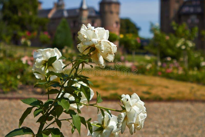 德哈尔城堡的庭院 免版税库存图片