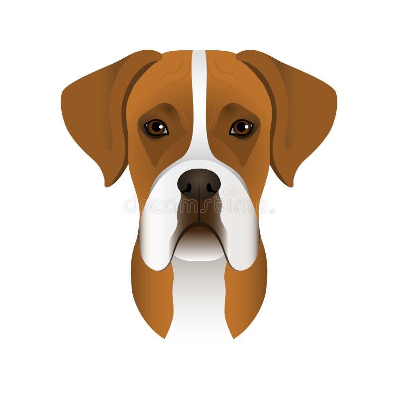 德国拳击手的被隔绝的五颜六色的头和面孔白色背景的 线颜色平的动画片品种狗画象 库存例证