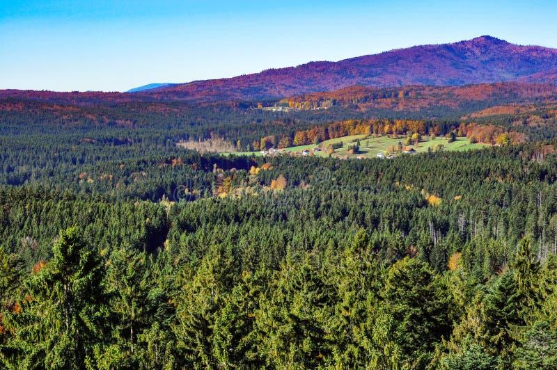 德国村庄在巴法力亚森林里 库存图片