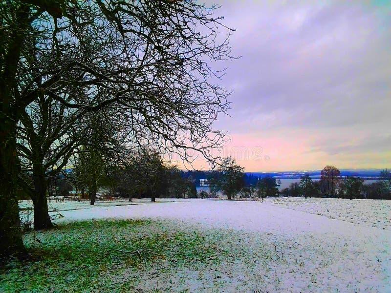 德国湖在冬天 库存图片