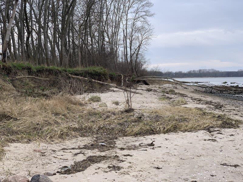 德国维斯马附近的Zirow海滩 库存图片