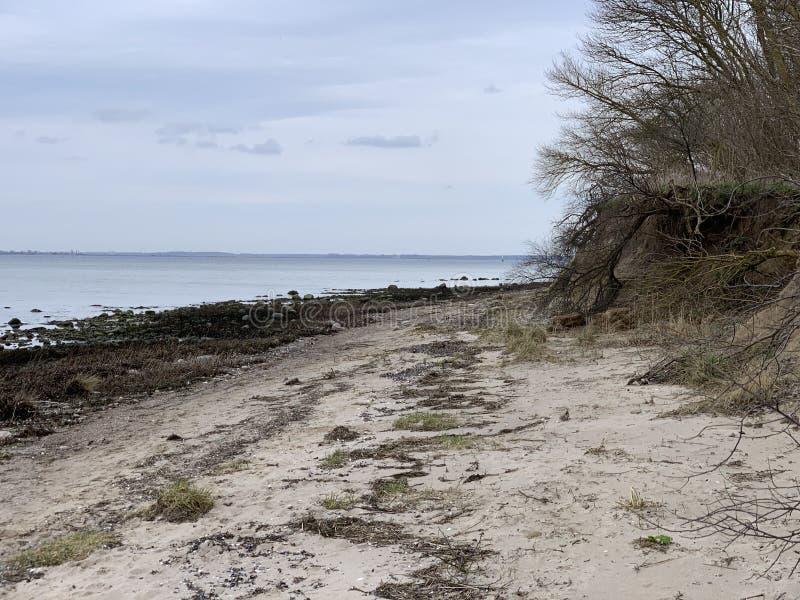 德国维斯马附近的Zirow海滩 库存照片