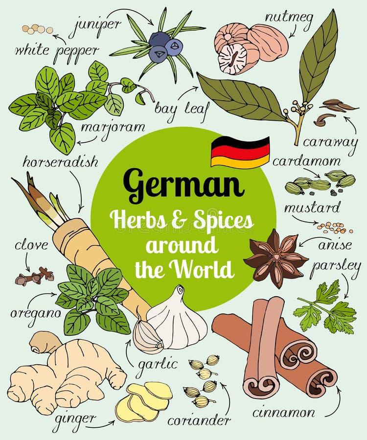 Download 德国草本和香料 向量例证. 插画 包括有 健康, 图象, 厨房, 乱画, 成份, 生态, 标记, 草本, 墨角兰 - 72357664