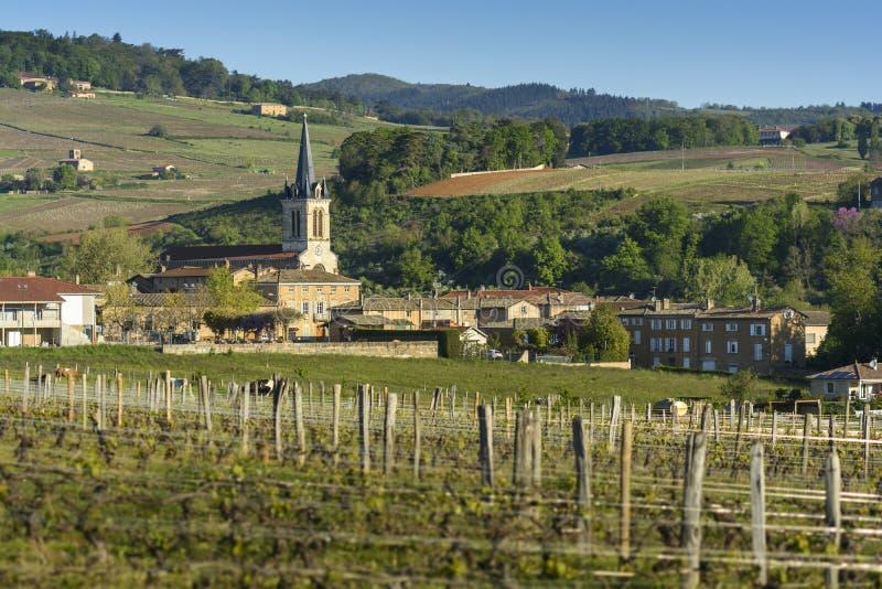 德尼切,博若莱红葡萄酒,法国村庄  免版税库存照片
