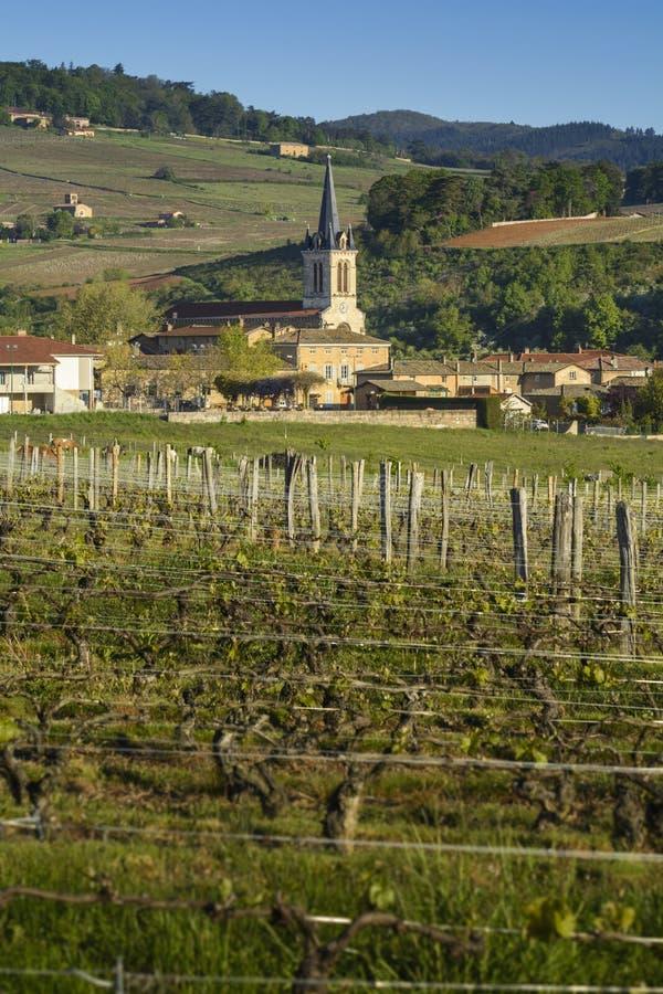德尼切,博若莱红葡萄酒,法国村庄  库存照片
