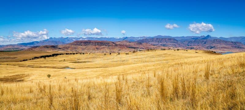 德肯斯伯格山的全景在南非 免版税库存图片