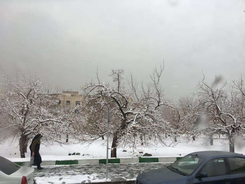 德黑兰,伊朗,冬天, KOHSAR,妇女, RELIGON 免版税库存图片