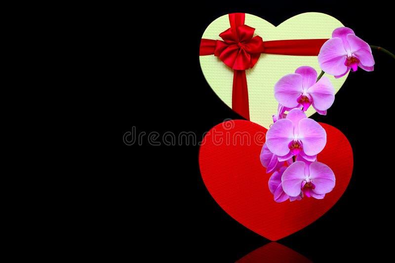 心形礼品盒及拟兰花彩色静物呈现 免版税库存图片