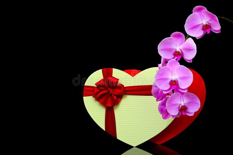 心形礼盒和粉色兰花的优雅静物展示 免版税图库摄影