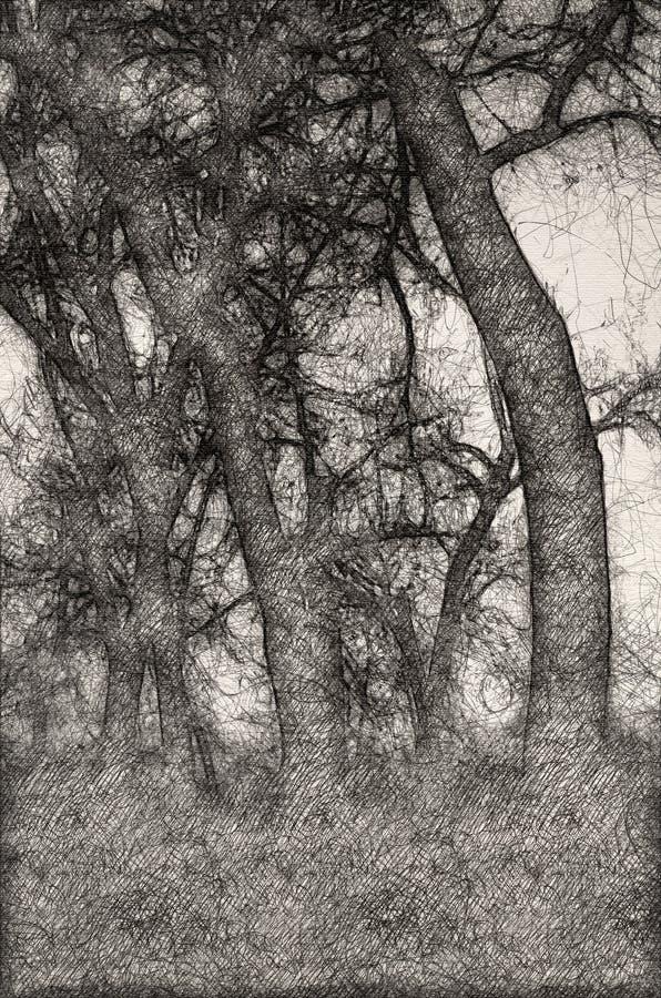 心情阴影剪影在黑暗的有薄雾的森林里 库存例证