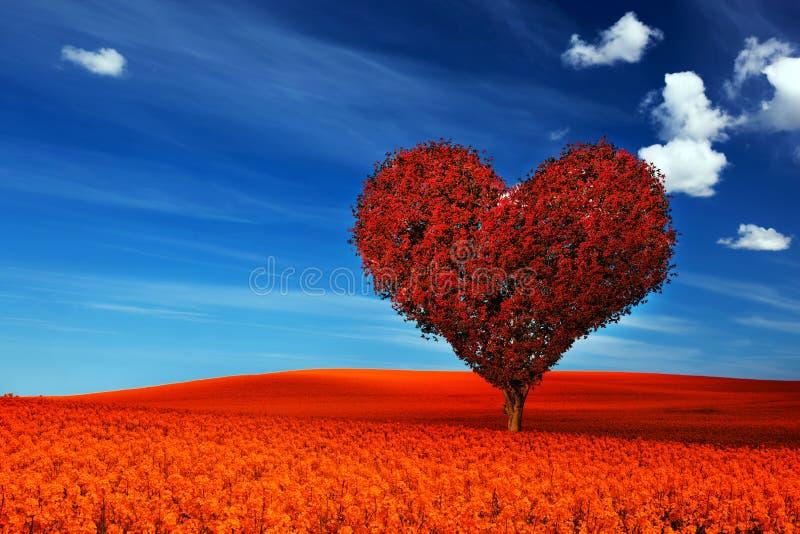心脏与红色的形状树在花田离开 爱 免版税库存照片