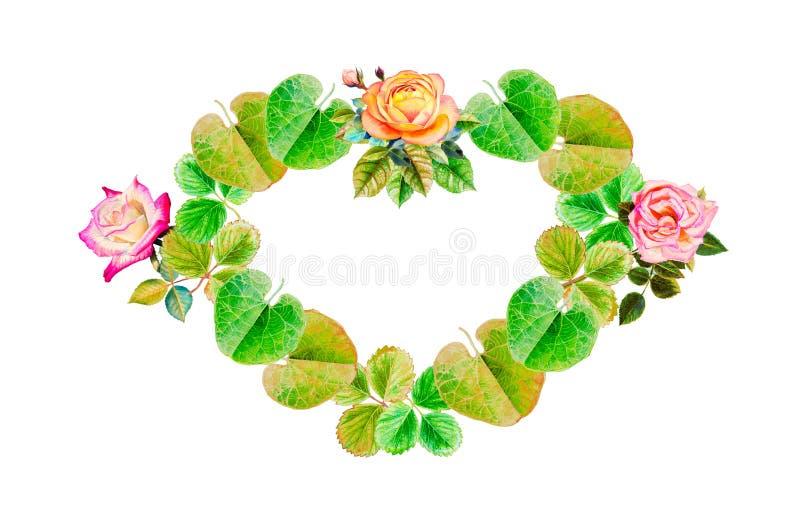 心脏叶子和玫瑰的绘画例证 库存例证
