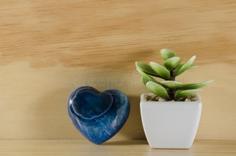心脏和植物 免版税库存照片