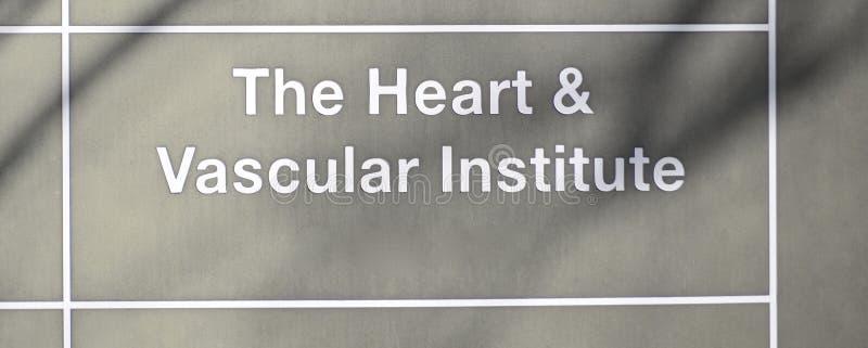 心脏和血管学院 库存照片