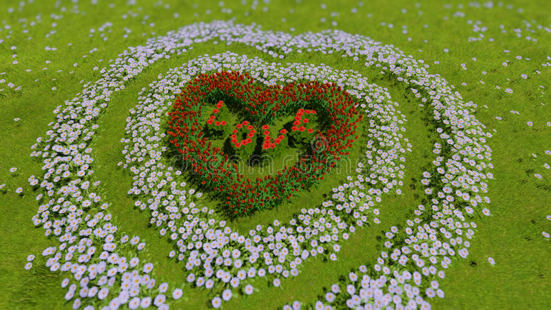 以心脏的形式各种各样的花在一个绿色领域,作为华伦泰` s天和爱的标志 免版税库存图片