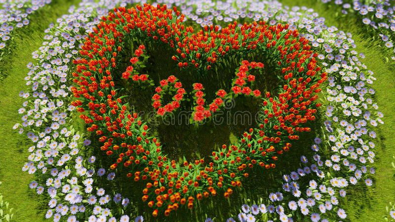 以心脏的形式各种各样的花在一个绿色领域,作为华伦泰` s天和爱的标志 库存图片