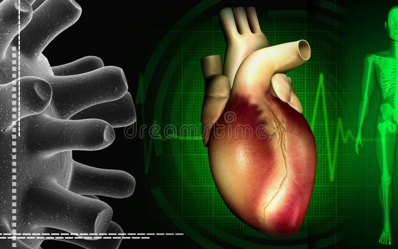 心脏eco克重点脉冲 向量例证