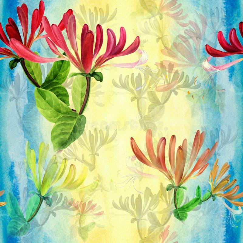 忍冬属植物-医药,香料厂和化妆用品植物 水彩 无缝的模式 墙纸 花和叶子 库存例证