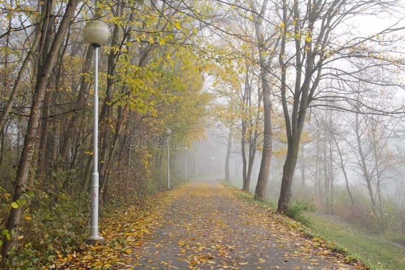 忧郁的有雾的秋天 库存照片