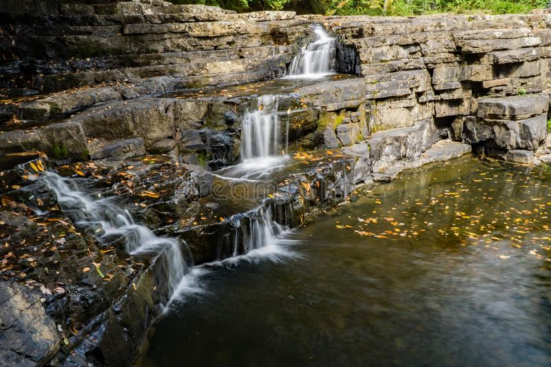 忧郁秋天,贾尔斯县,弗吉尼亚,美国 免版税库存图片