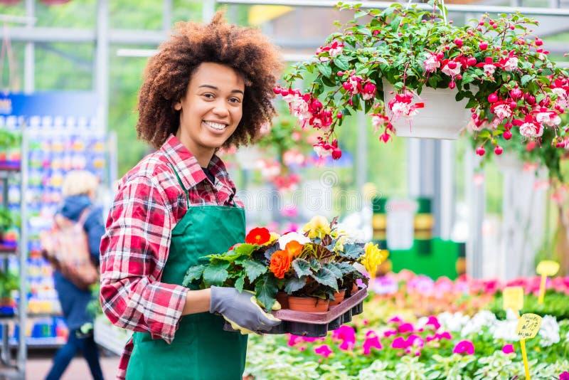 快乐的少妇工作的画象作为卖花人的一家现代花店的 免版税库存图片